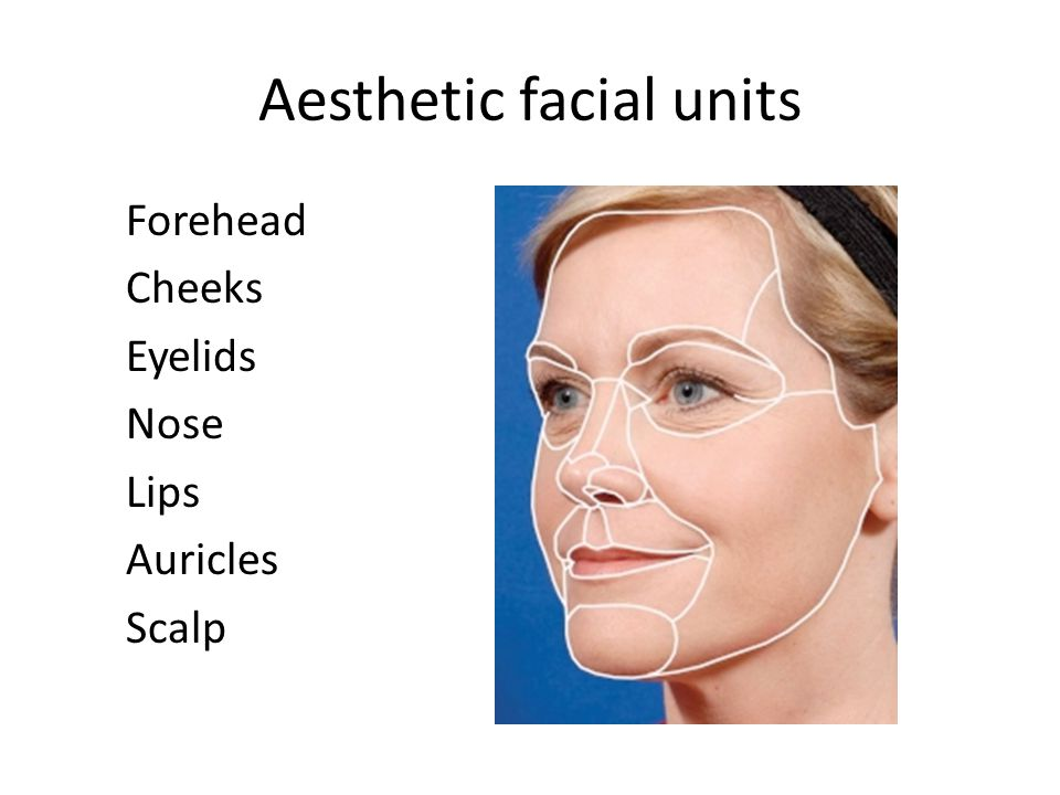 Aesthetic facial units