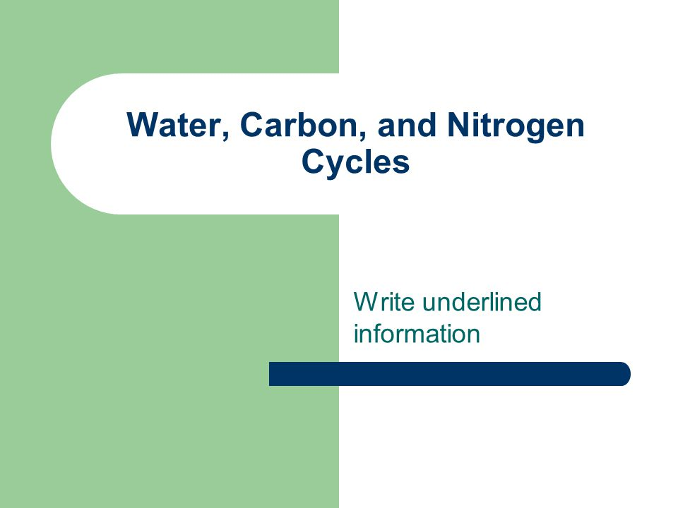 Water, Carbon, and Nitrogen Cycles - ppt download