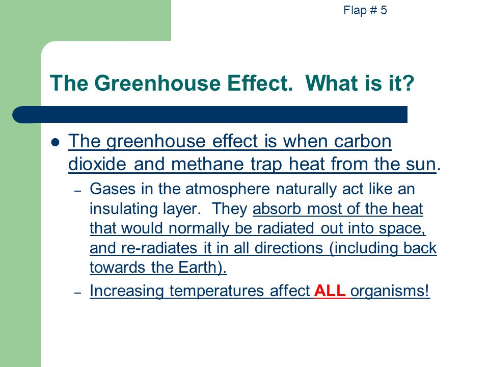 The Greenhouse Effect. What is it