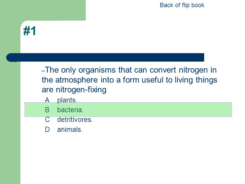 Back of flip book #1. The only organisms that can convert nitrogen in the atmosphere into a form useful to living things are nitrogen-fixing.