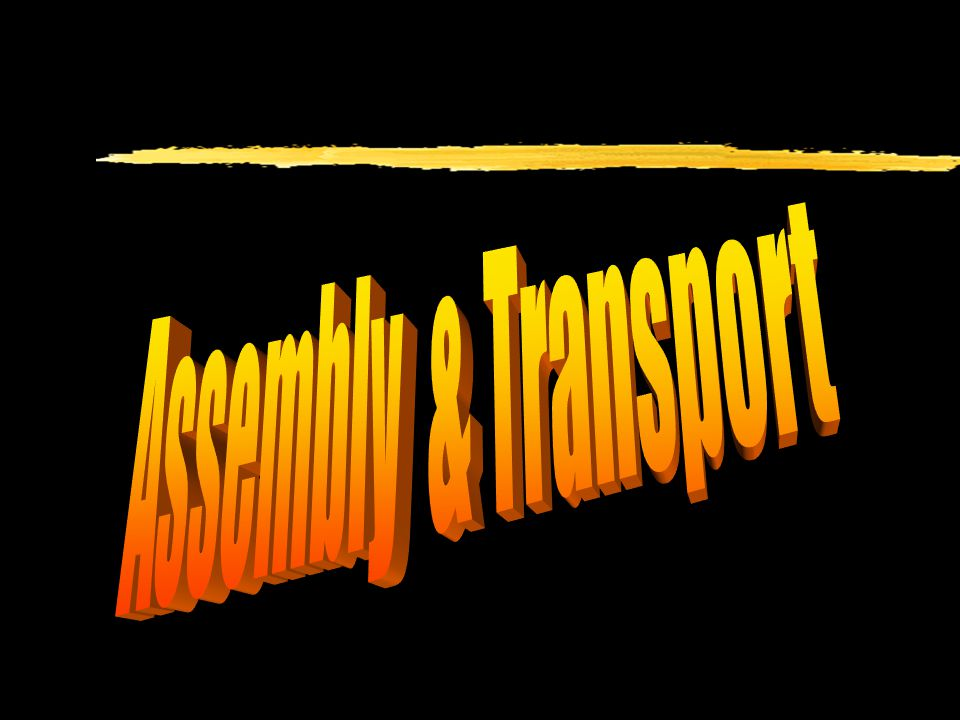 Assembly & Transport