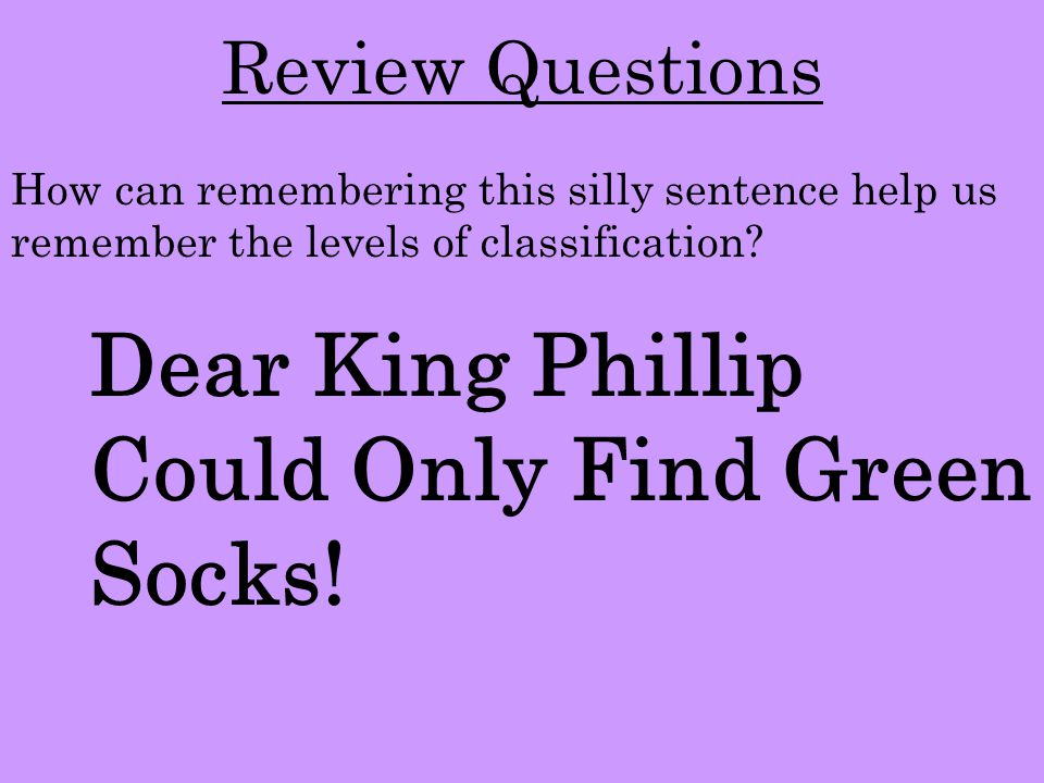 Dear King Phillip Could Only Find Green Socks!