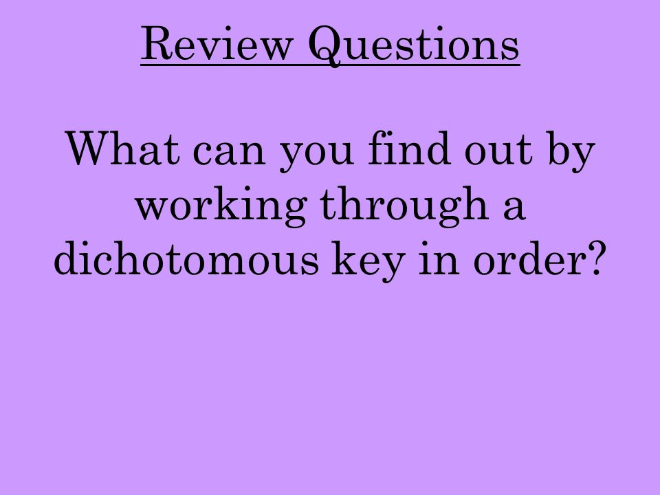 What can you find out by working through a dichotomous key in order