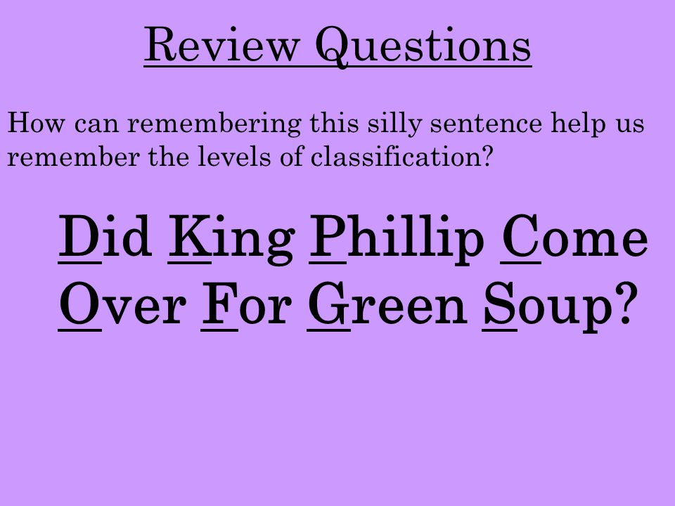 Did King Phillip Come Over For Green Soup