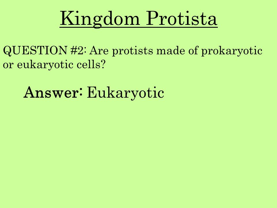 Kingdom Protista Answer: Eukaryotic