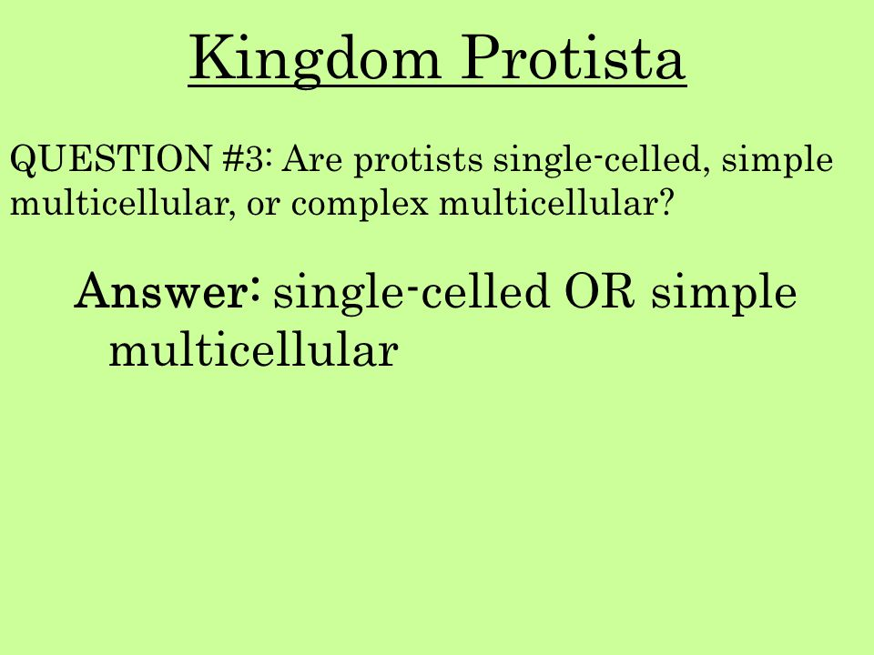 Kingdom Protista Answer: single-celled OR simple multicellular