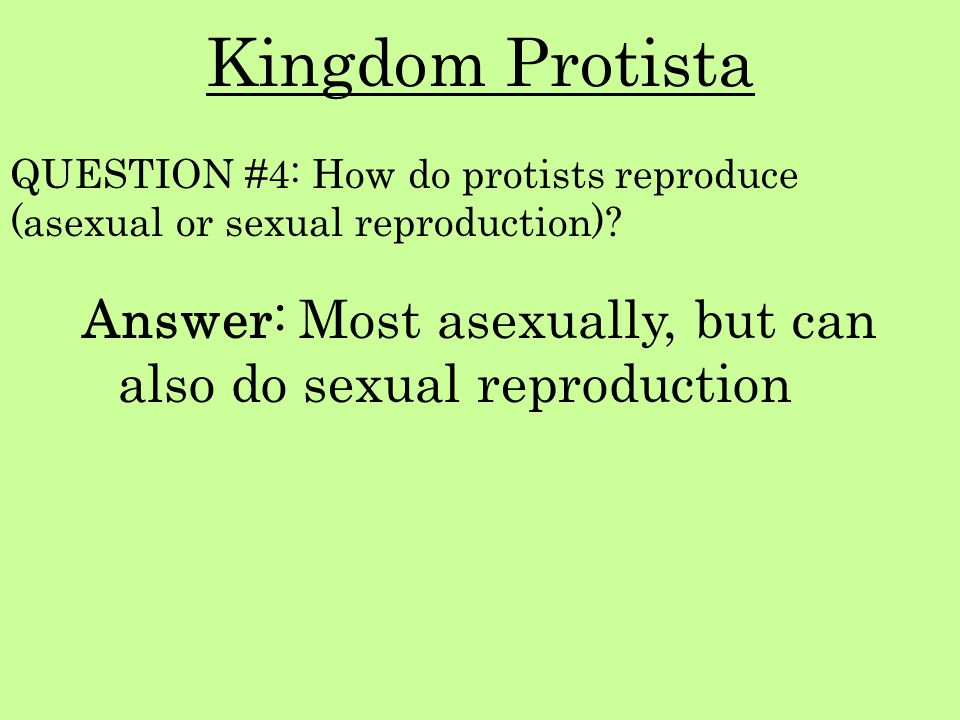 Kingdom Protista QUESTION #4: How do protists reproduce (asexual or sexual reproduction)