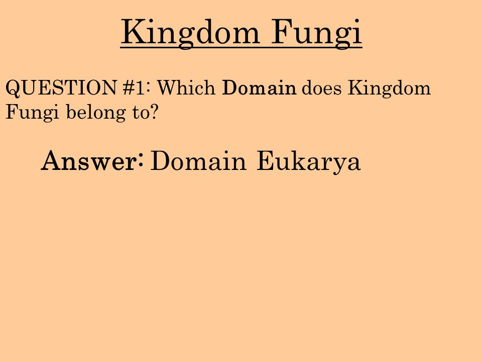 Kingdom Fungi Answer: Domain Eukarya