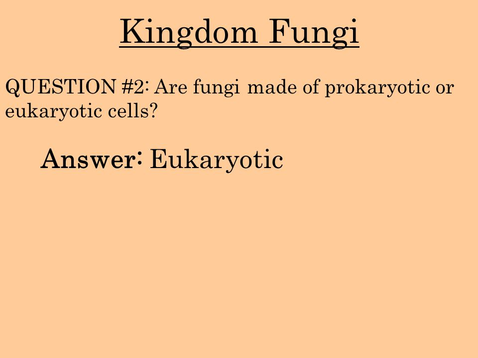Kingdom Fungi Answer: Eukaryotic