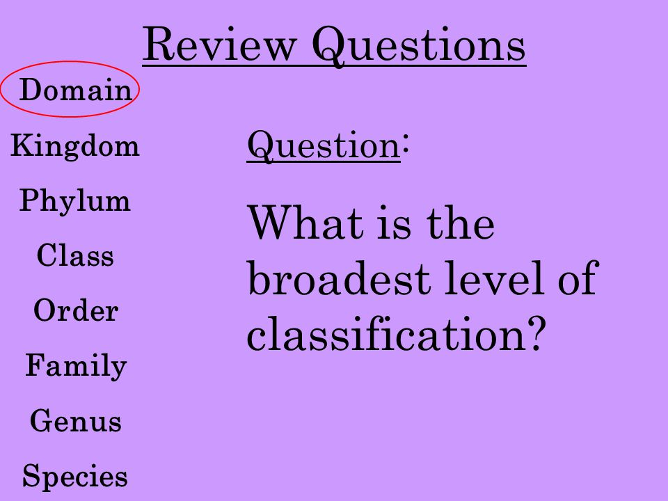 What is the broadest level of classification