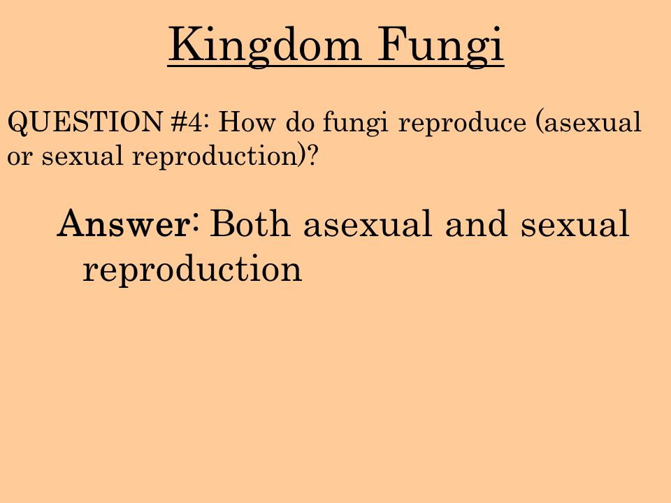 Kingdom Fungi Answer: Both asexual and sexual reproduction
