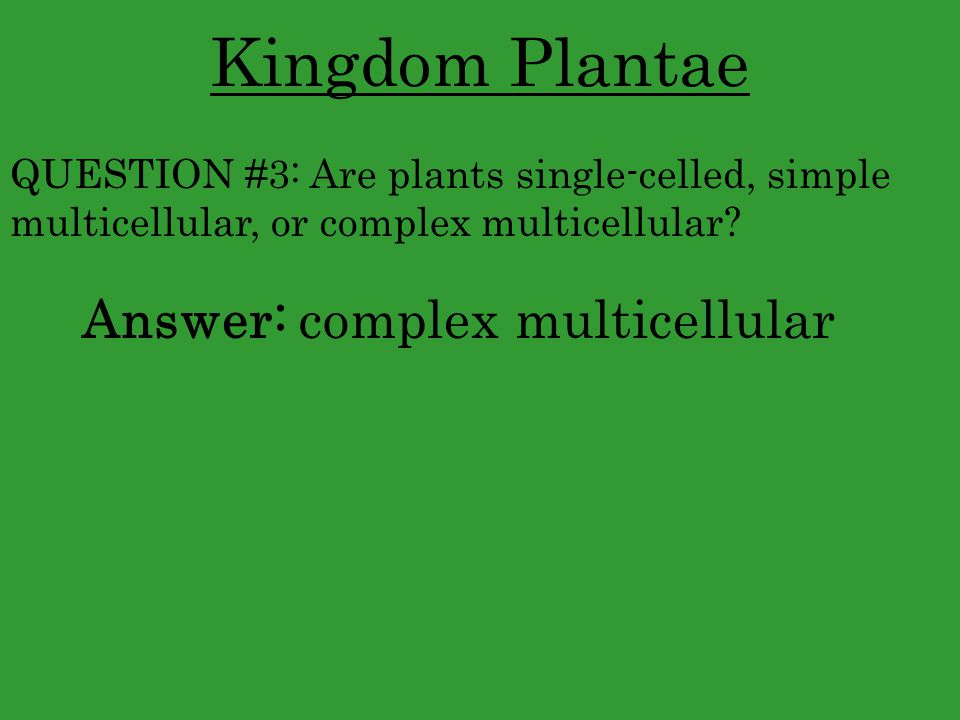 Kingdom Plantae Answer: complex multicellular