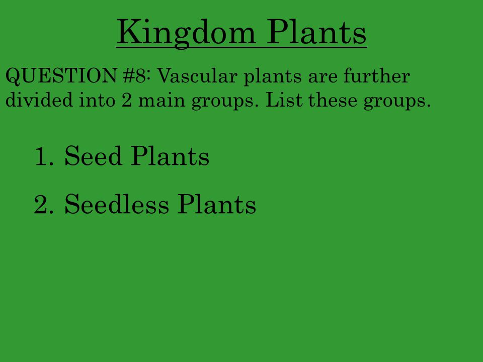 Kingdom Plants Seed Plants Seedless Plants