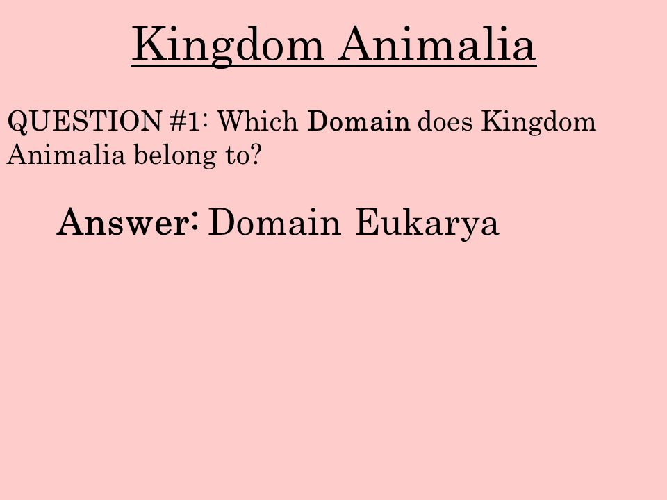 Kingdom Animalia Answer: Domain Eukarya