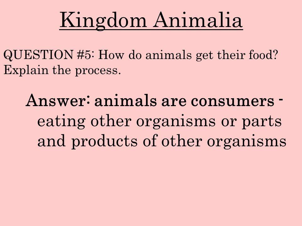 Kingdom Animalia QUESTION #5: How do animals get their food Explain the process.