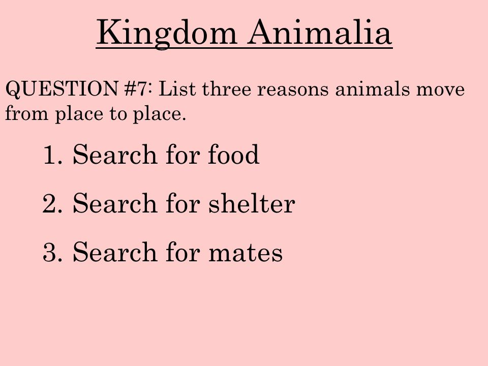 Kingdom Animalia Search for food Search for shelter Search for mates
