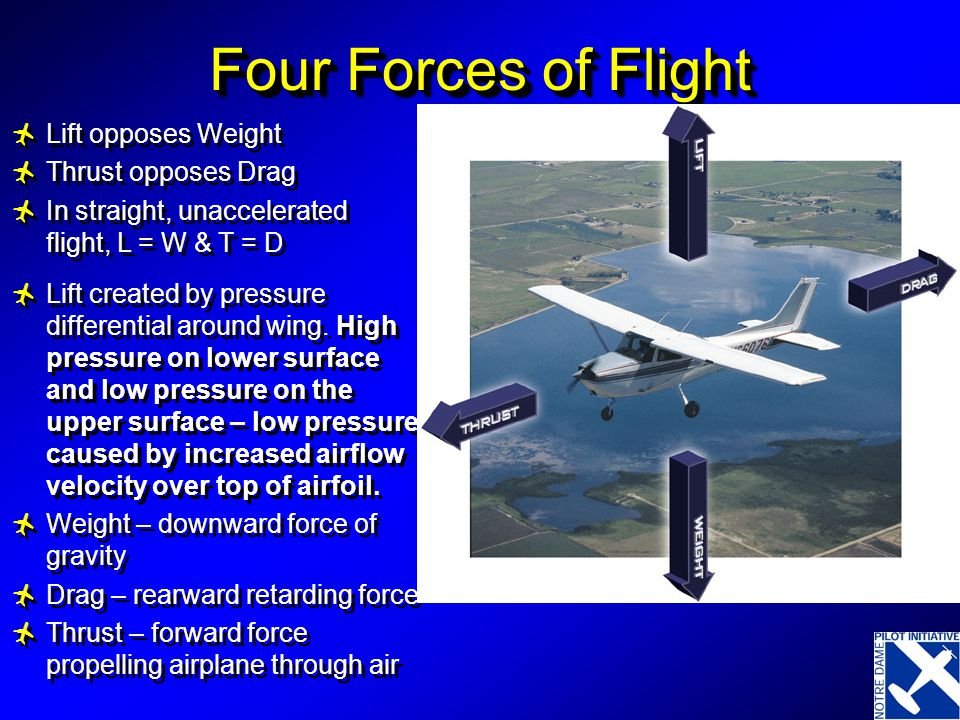 Four Forces of Flight Lift opposes Weight Thrust opposes Drag