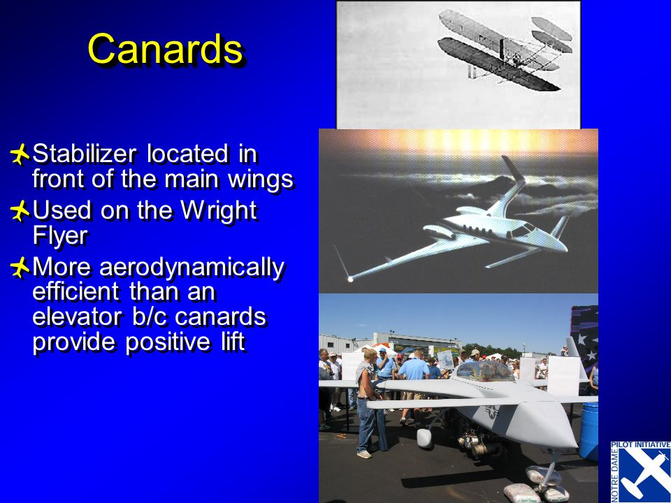 Canards Stabilizer located in front of the main wings