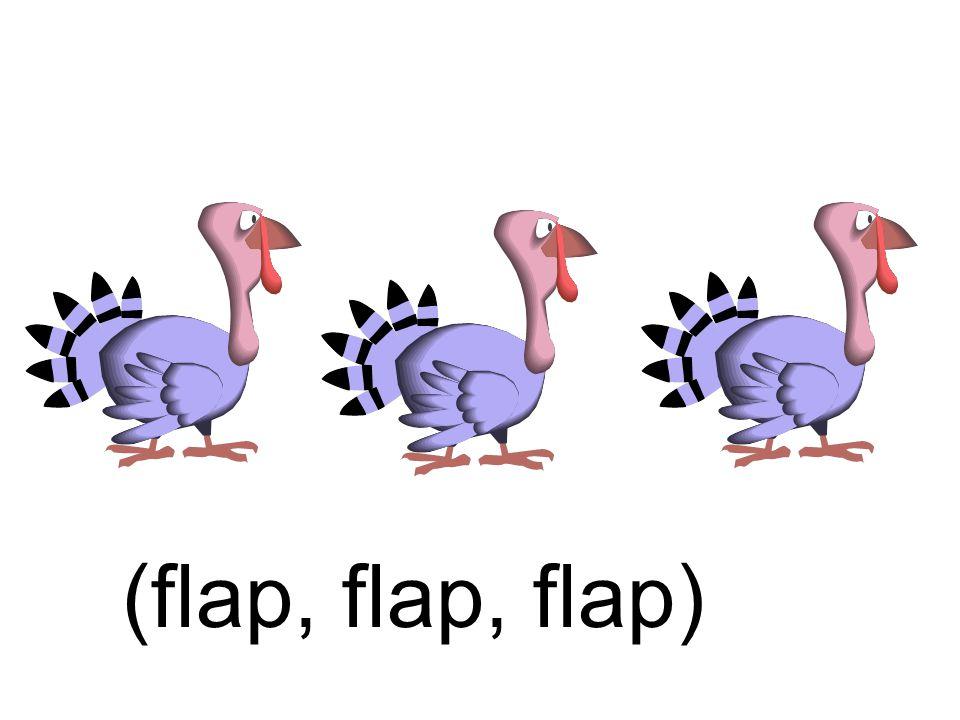(flap, flap, flap)