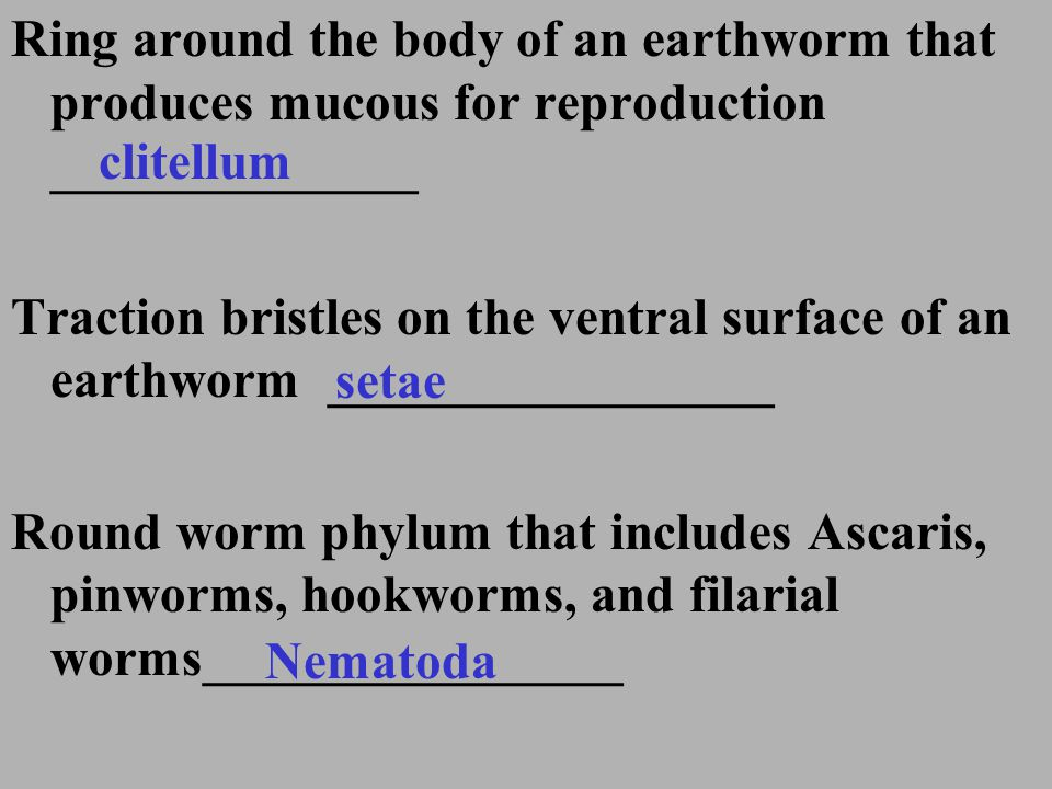 Ring around the body of an earthworm that produces mucous for reproduction ______________