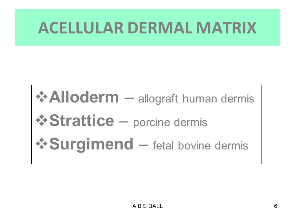 ACELLULAR DERMAL MATRIX