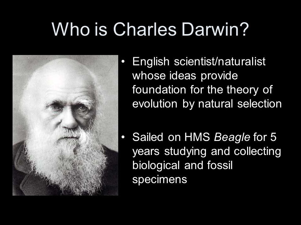 Who is Charles Darwin English scientist/naturalist whose ideas provide foundation for the theory of evolution by natural selection.