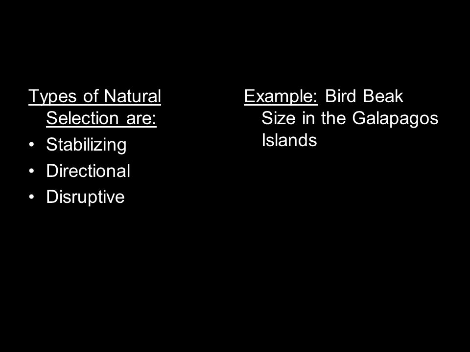 Types of Natural Selection are: