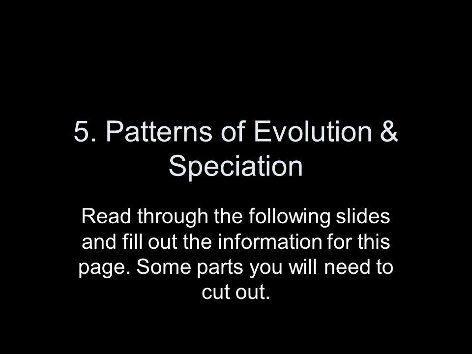 5. Patterns of Evolution & Speciation