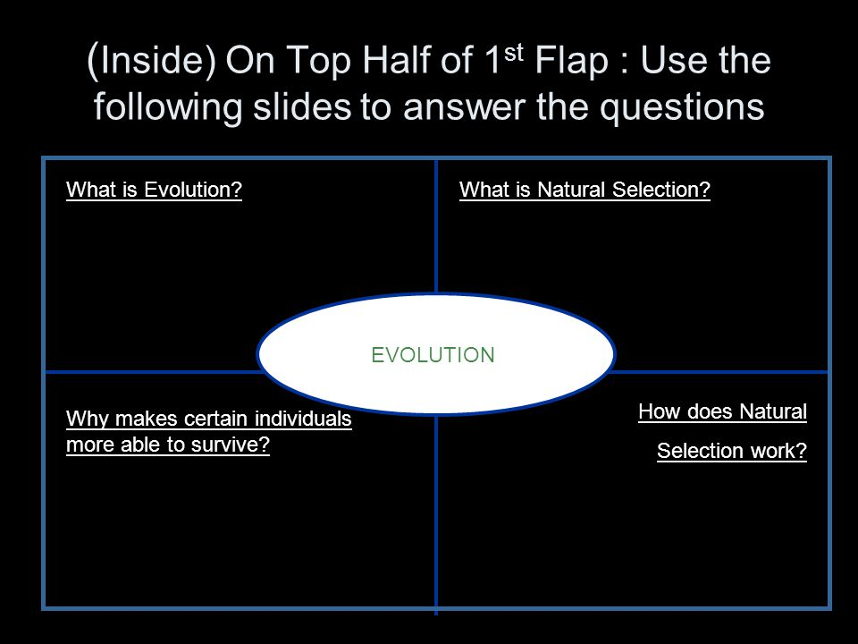 (Inside) On Top Half of 1st Flap : Use the following slides to answer the questions