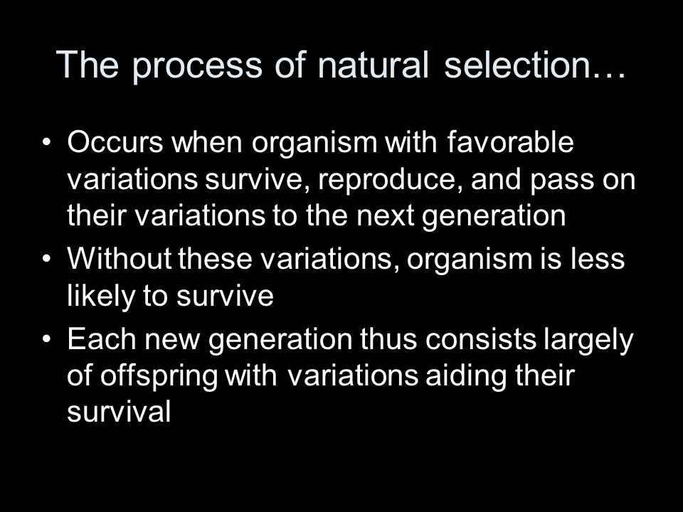 The process of natural selection…