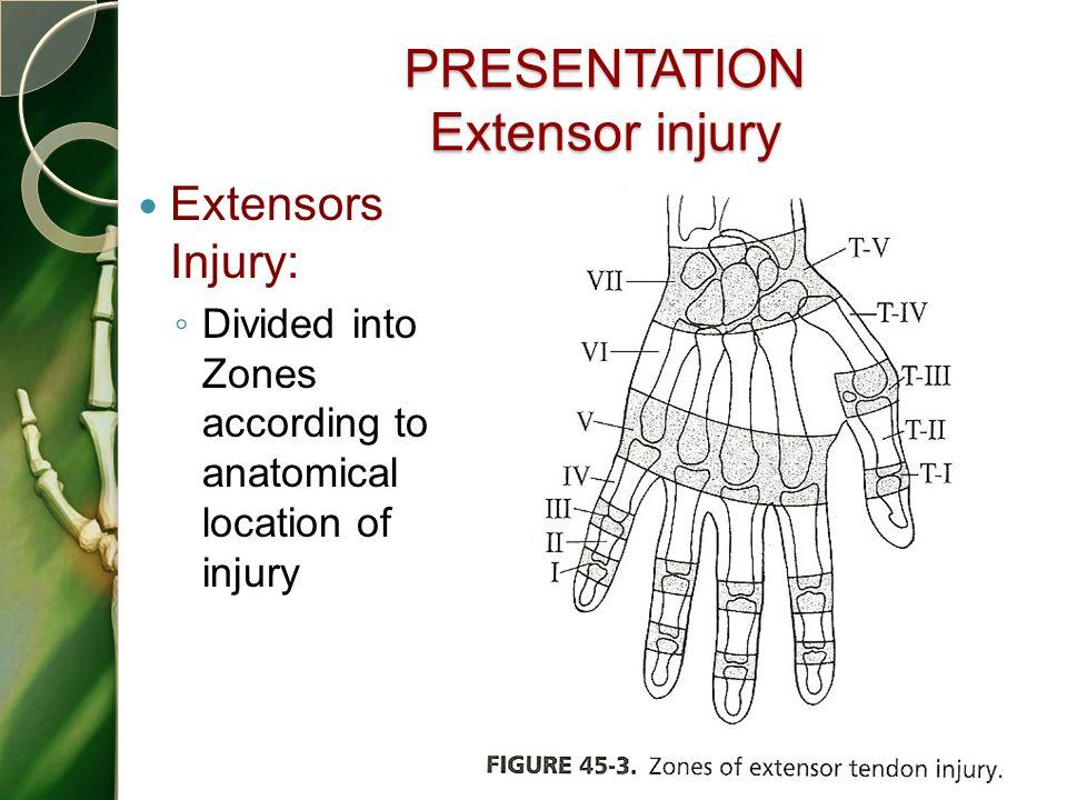 PRESENTATION Extensor injury
