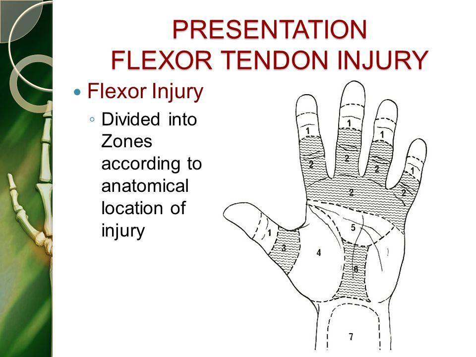 PRESENTATION FLEXOR TENDON INJURY