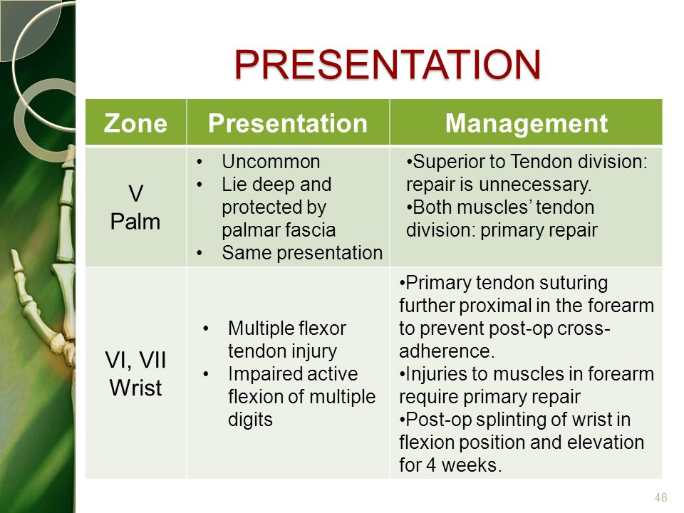 PRESENTATION Zone Presentation Management V Palm VI, VII Wrist