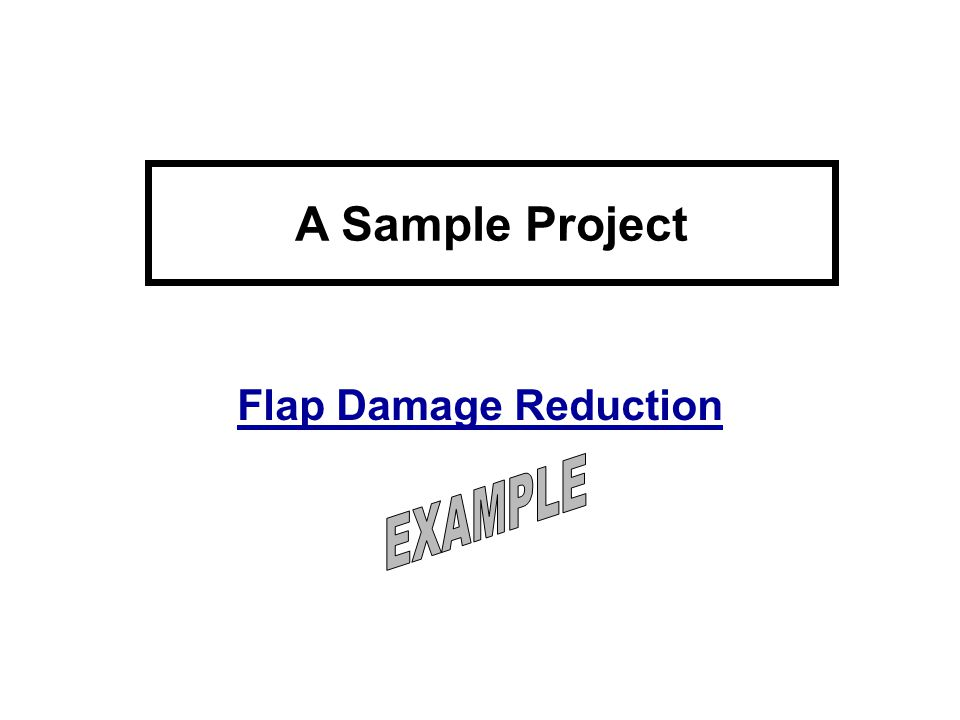 A Sample Project Flap Damage Reduction EXAMPLE