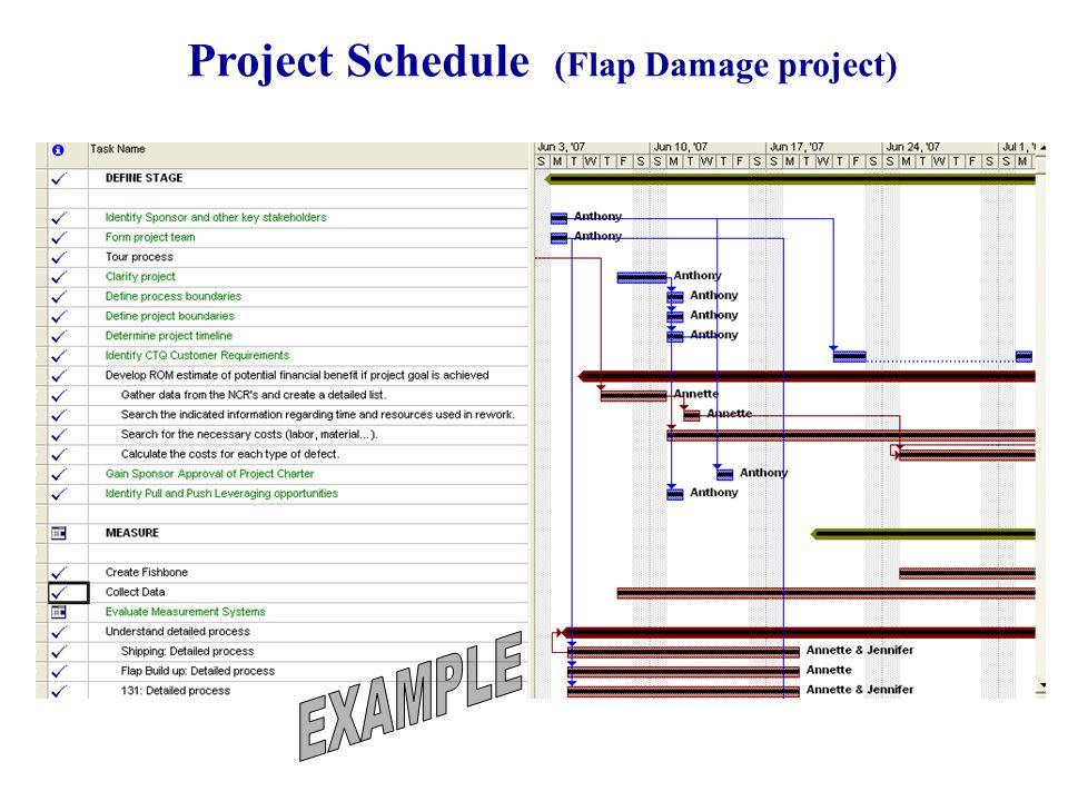 Project Schedule (Flap Damage project)
