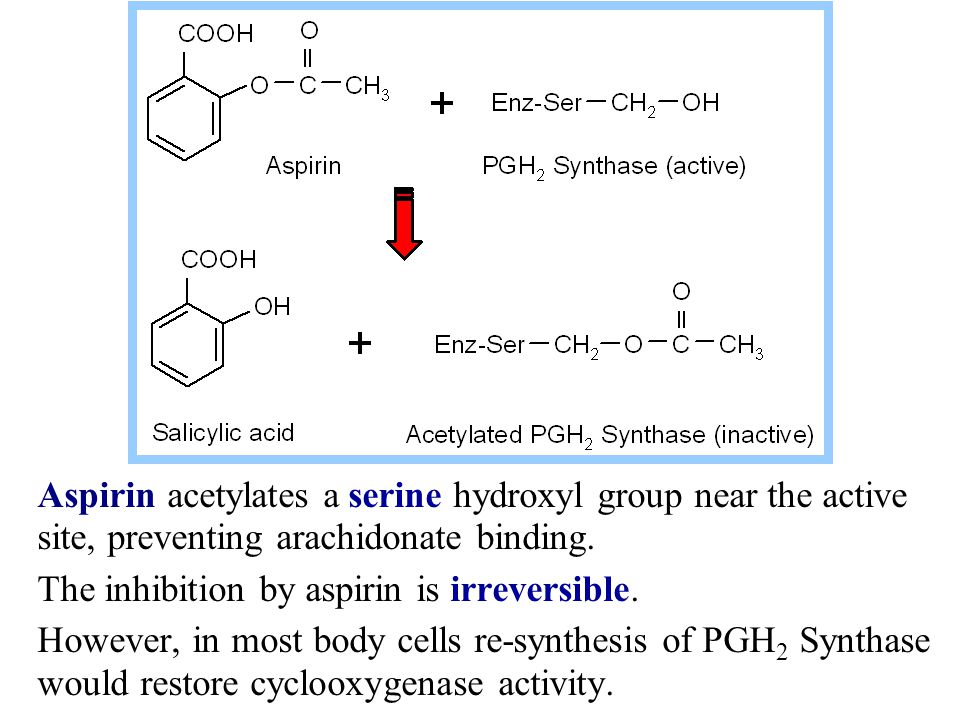 Aspirin acetylates a serine hydroxyl group near the active site, preventing arachidonate binding.
