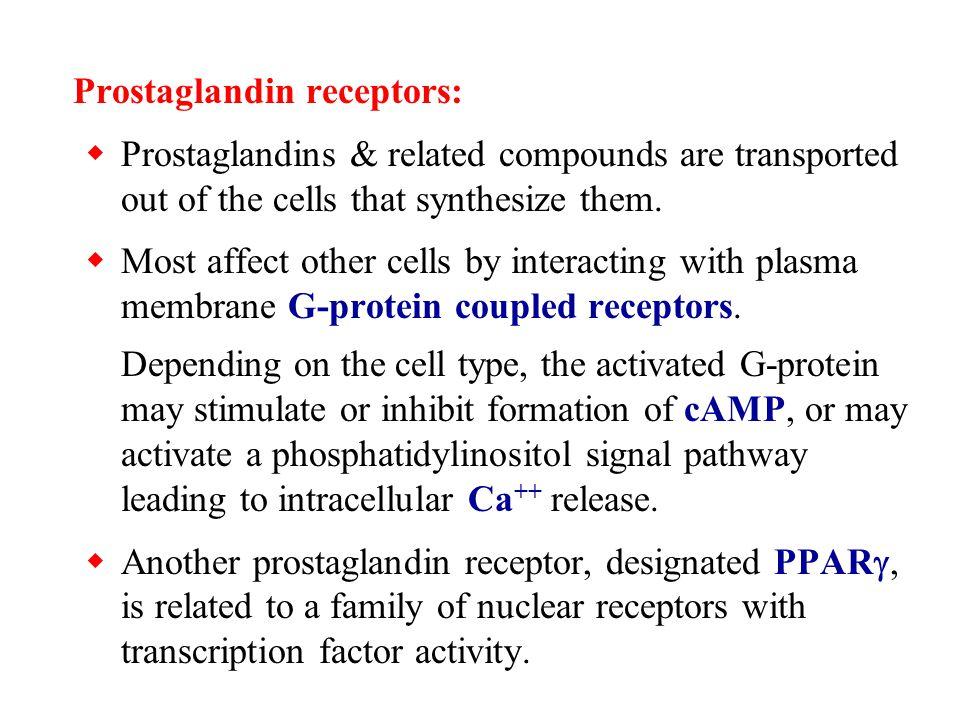 Prostaglandin receptors: