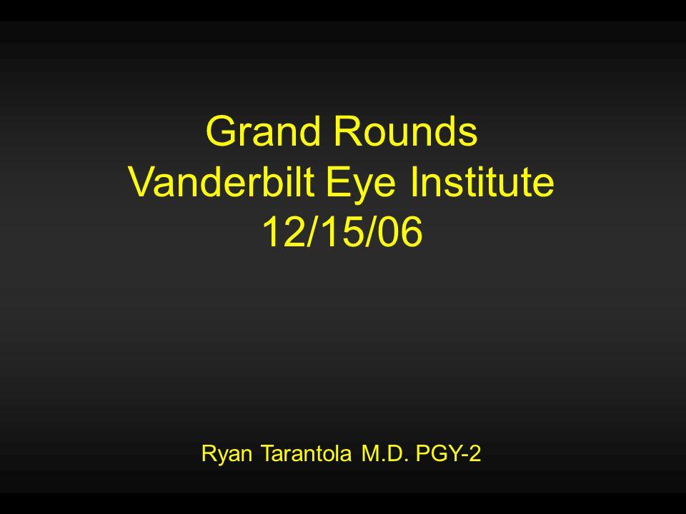 Vanderbilt Eye Institute