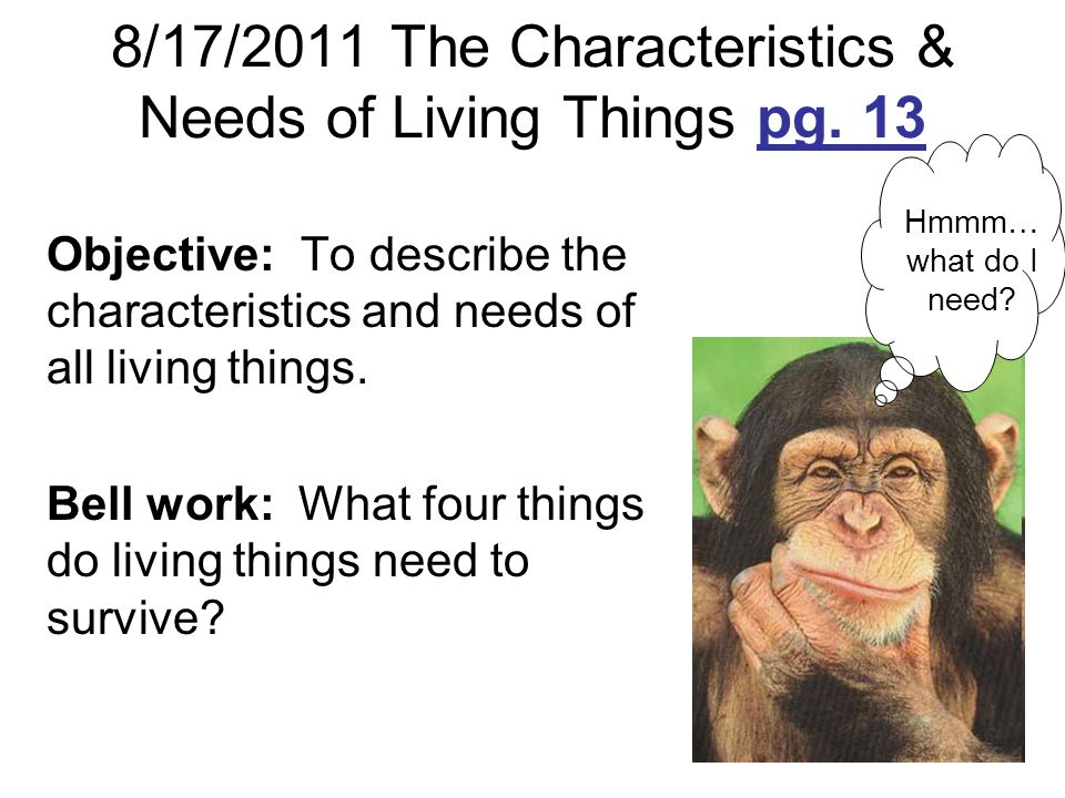 8/17/2011 The Characteristics & Needs of Living Things pg. 13