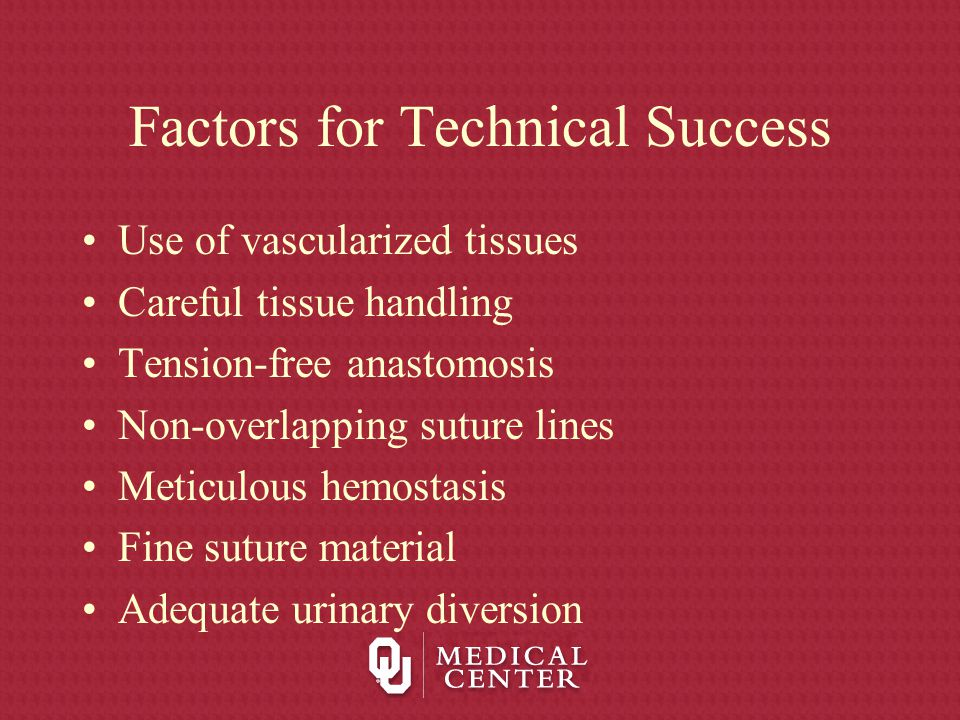 Factors for Technical Success