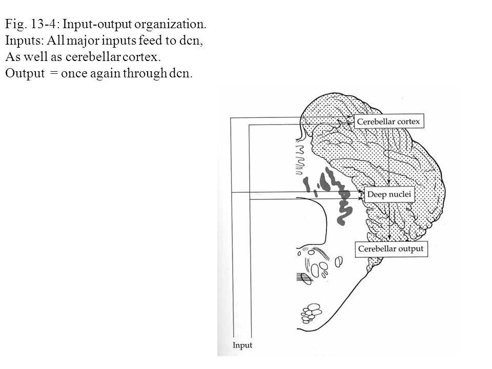 Fig. 13-4: Input-output organization.