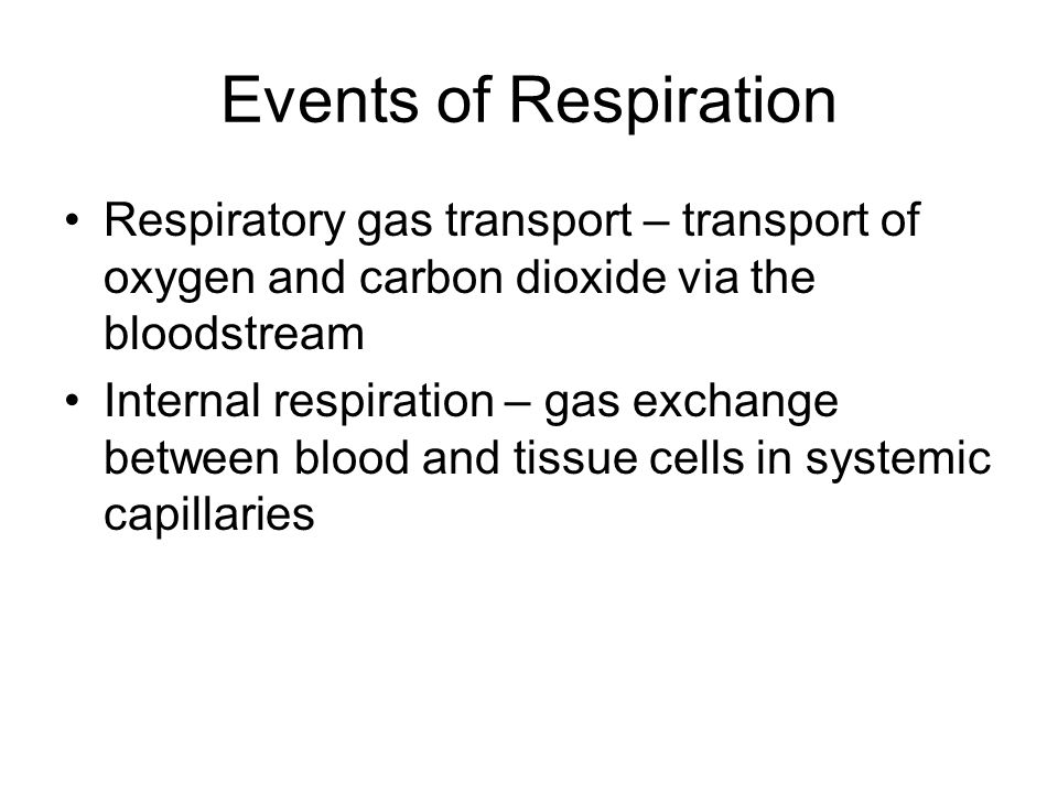Events of Respiration Respiratory gas transport – transport of oxygen and carbon dioxide via the bloodstream.