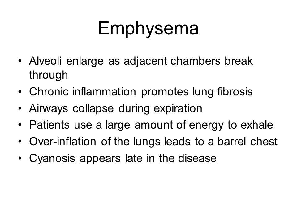 Emphysema Alveoli enlarge as adjacent chambers break through