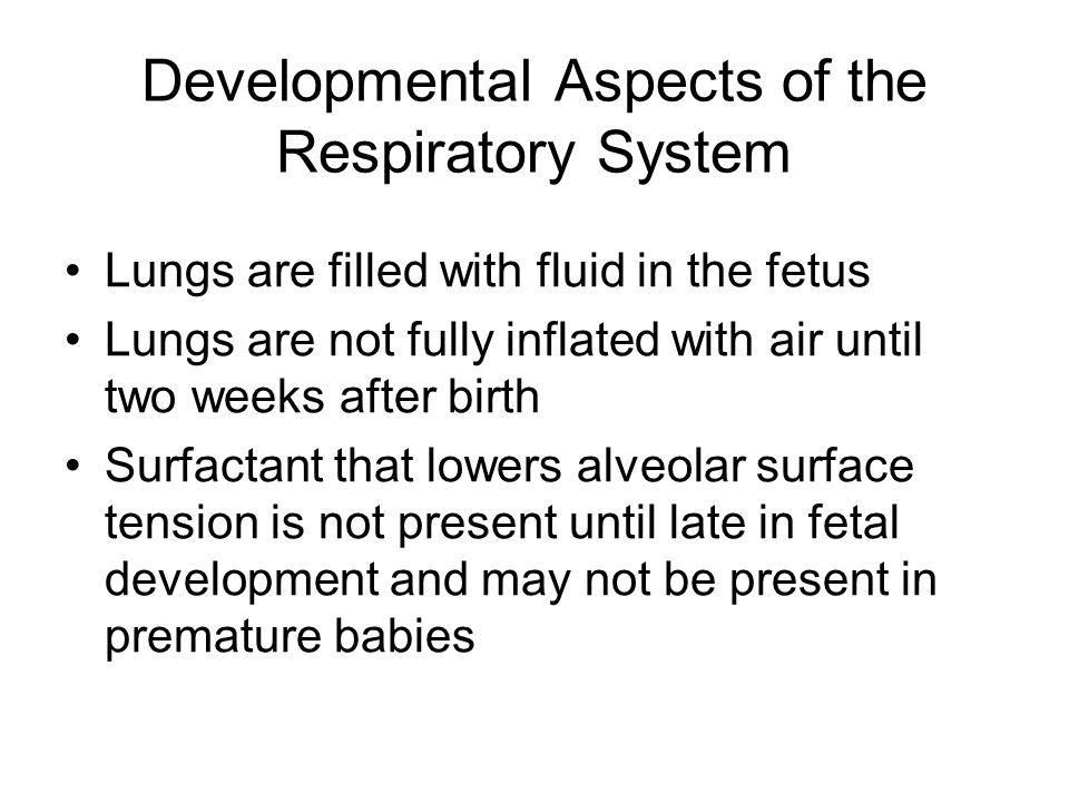 Developmental Aspects of the Respiratory System