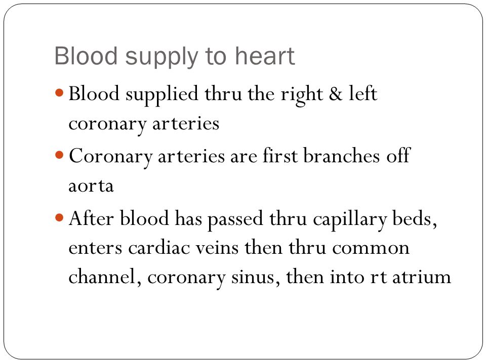 Blood supply to heart Blood supplied thru the right & left coronary arteries. Coronary arteries are first branches off aorta.