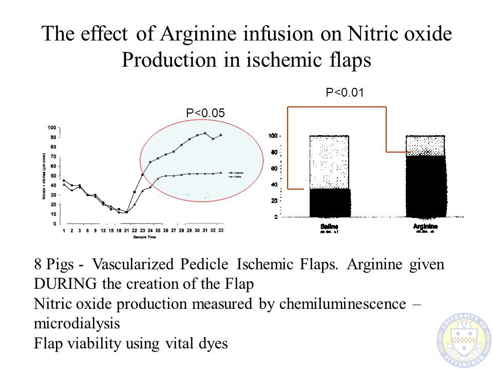 The effect of Arginine infusion on Nitric oxide Production in ischemic flaps