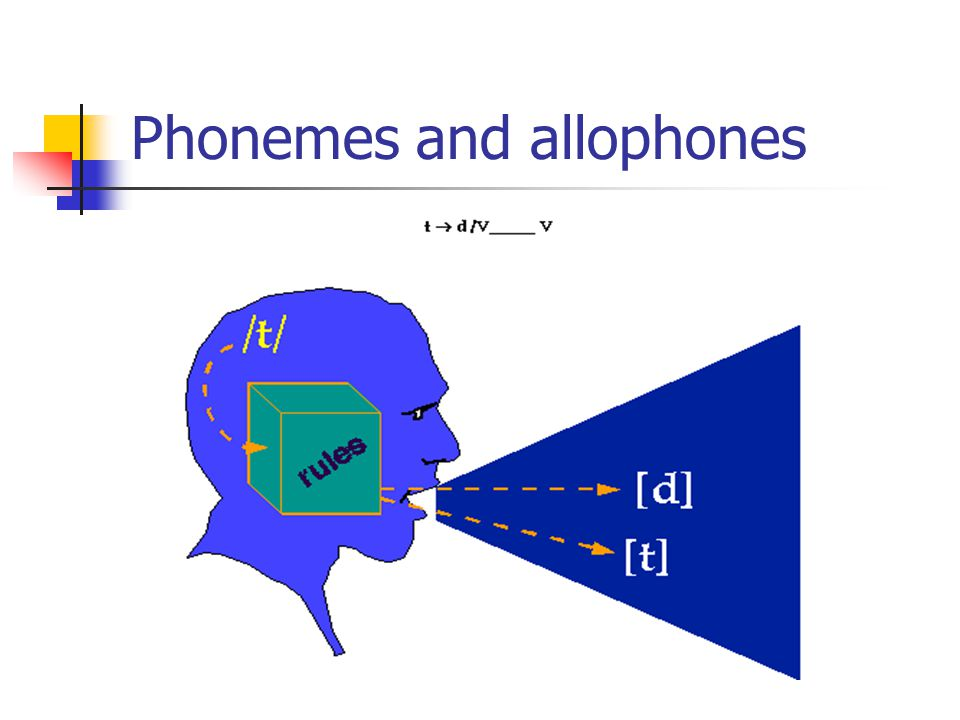 Phonemes and allophones