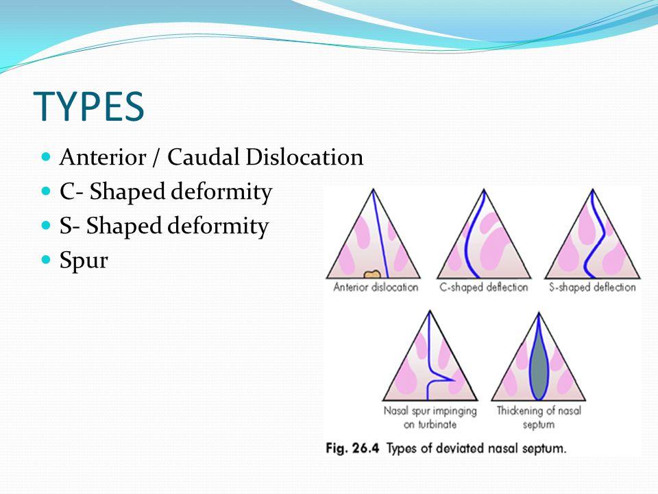 TYPES Anterior / Caudal Dislocation C- Shaped deformity