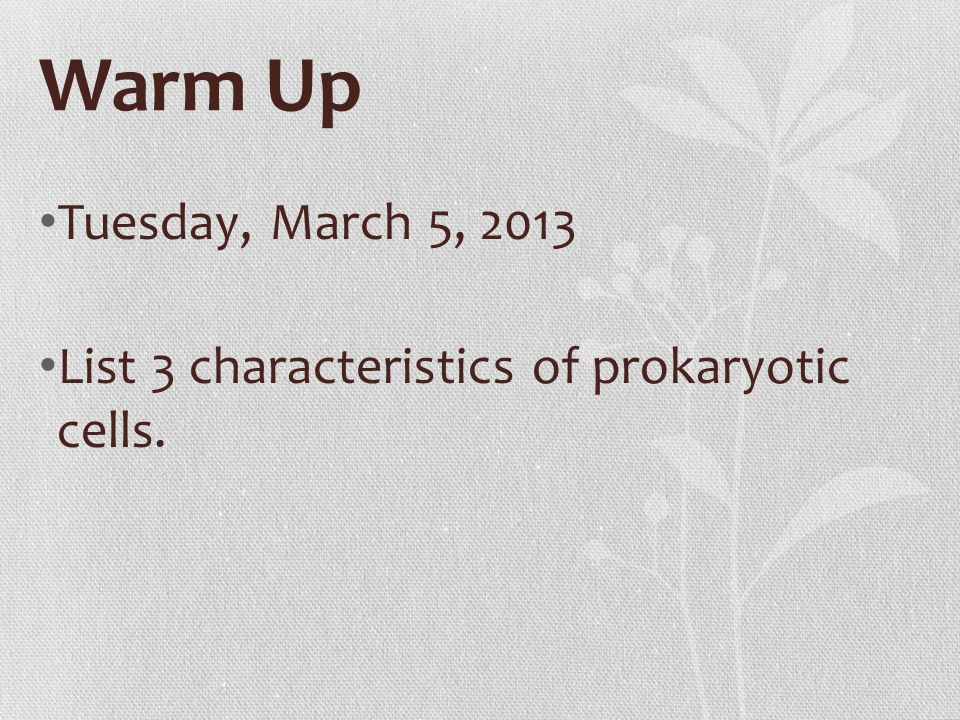 Warm Up Tuesday, March 5, 2013 List 3 characteristics of prokaryotic cells.