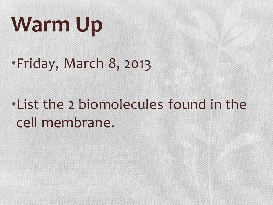 Warm Up Friday, March 8, 2013 List the 2 biomolecules found in the cell membrane.